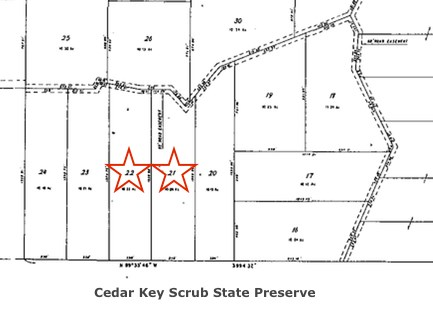 Two 10-acre Tracts